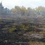 pozhar-vozle-zapravki-04