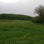 seysmorazvedka-12052018-08