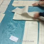 vybory-31032019-09