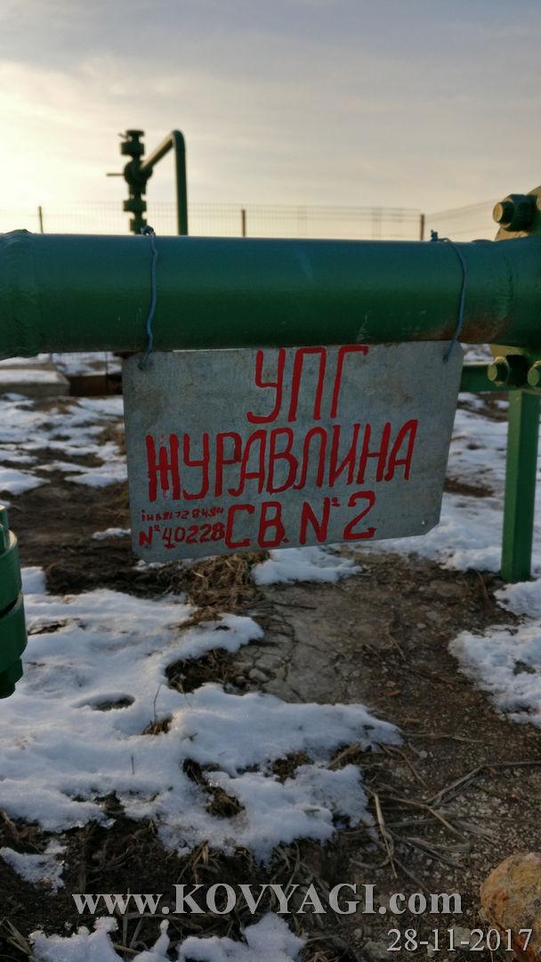 zuravlyna6-28112017-52