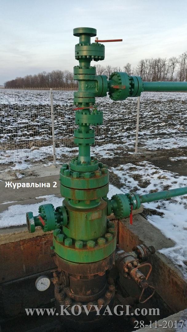zuravlyna6-28112017-53