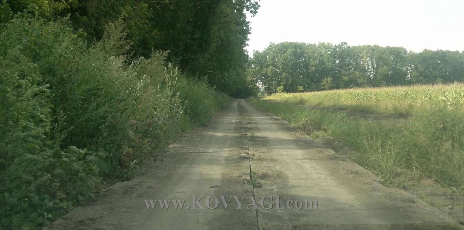 Vstrecha-ESKO-150815-07