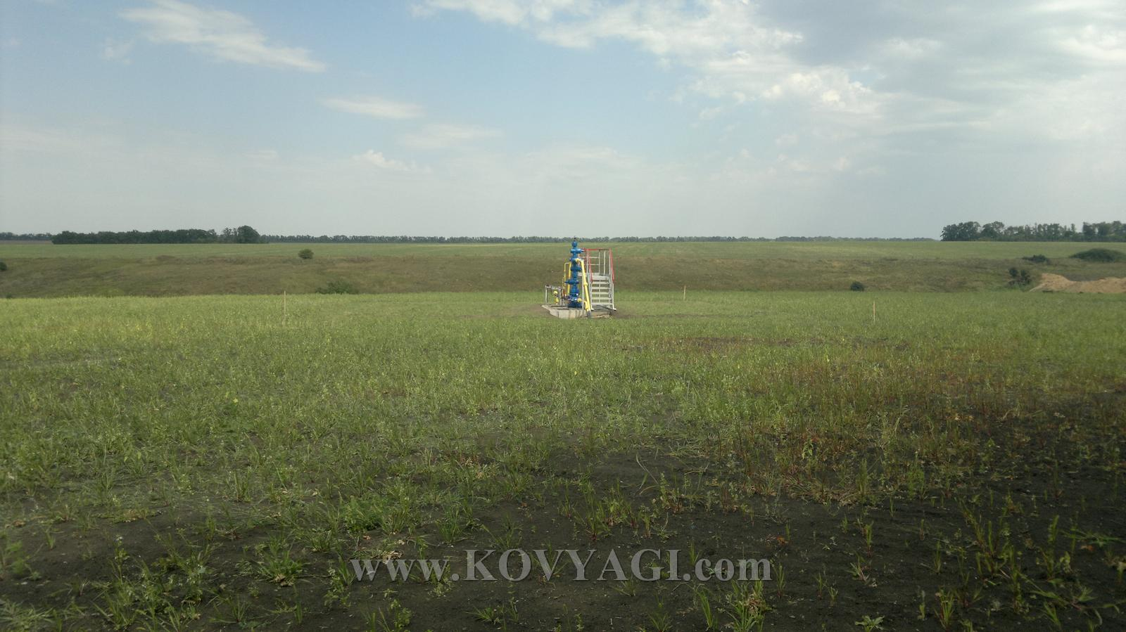 Vstrecha-ESKO-150815-22