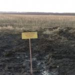 Газаоровод Завода УРГ ЭСКО-СЕВЕР
